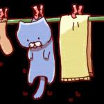 タオルを使って肩甲骨の体操
